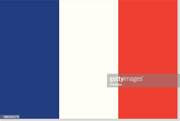 stockillustraties, clipart, cartoons en iconen met french flag or france - franse vlag