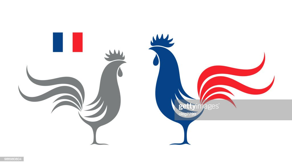 French rooster. Isolated rooster on white background