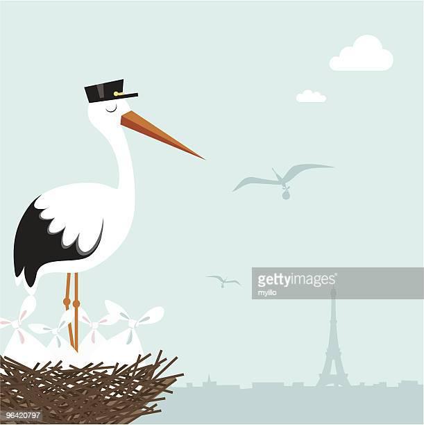 stockillustraties, clipart, cartoons en iconen met french stork in the nest waiting. paris - dierennest