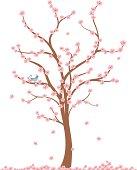 Fresh Air Cherry Tree