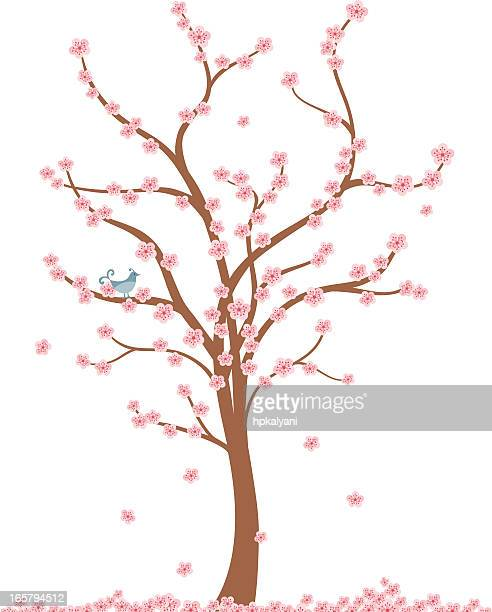 ilustraciones, imágenes clip art, dibujos animados e iconos de stock de aire fresco cherry tree - cherry tree