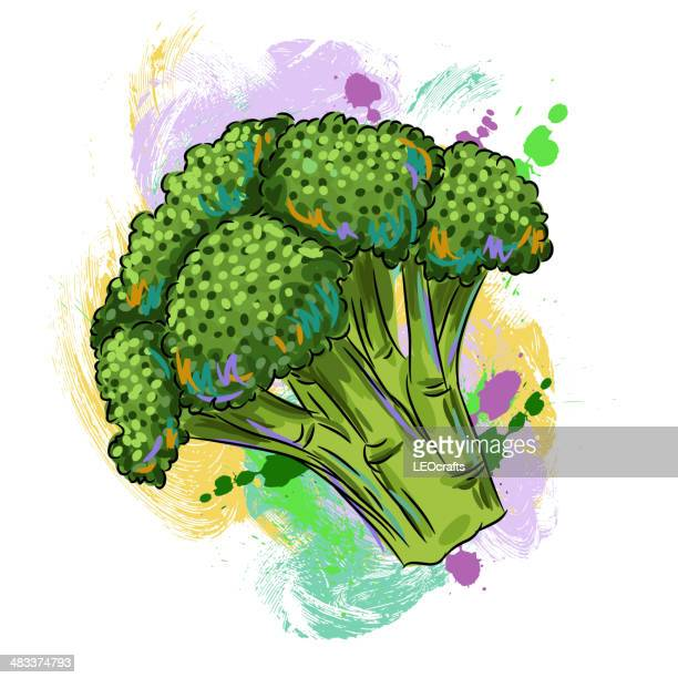 fresh broccoli - broccoli stock illustrations, clip art, cartoons, & icons