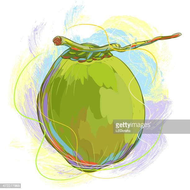fresh coconut - coconut milk stock illustrations, clip art, cartoons, & icons