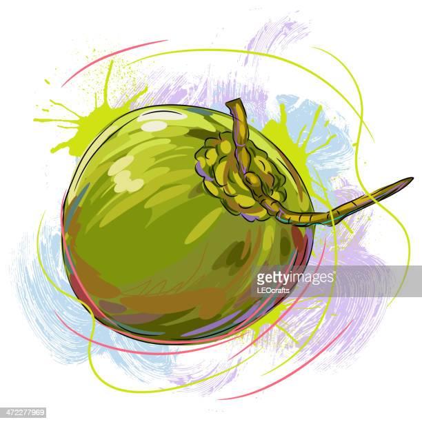 fresh coconut - coconut stock illustrations, clip art, cartoons, & icons