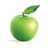 Fresh green apple with water drops realistic vector illustration isolated on white