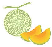 fresh melon, isolated on white background.