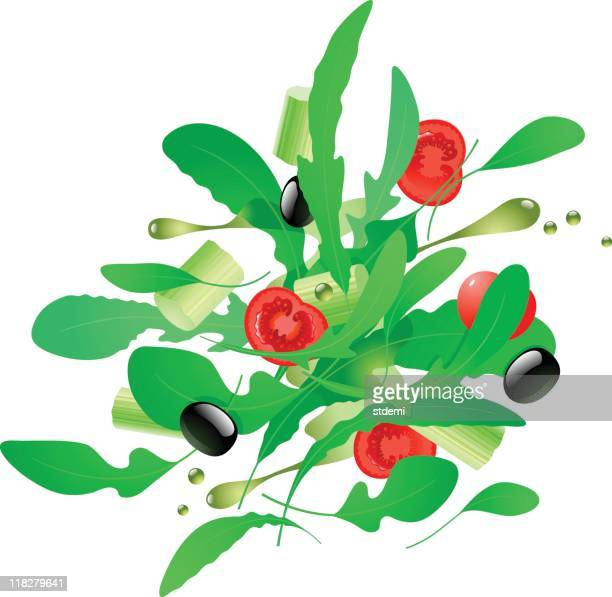fresh salad - arugula stock illustrations, clip art, cartoons, & icons