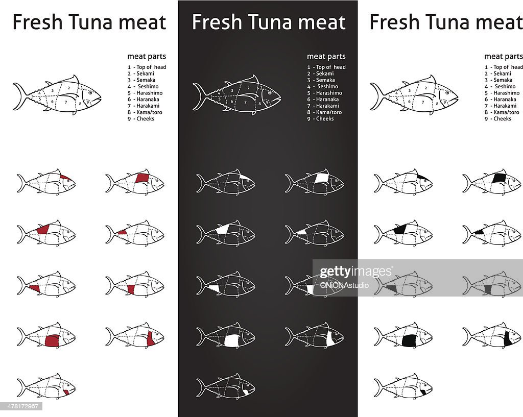 Fresh tuna meat cuts diagram set