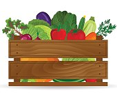 Fresh vegetables in a box illustration. Healthy vegetables and vegetarian food banners. Fresh organic food, healthy eating