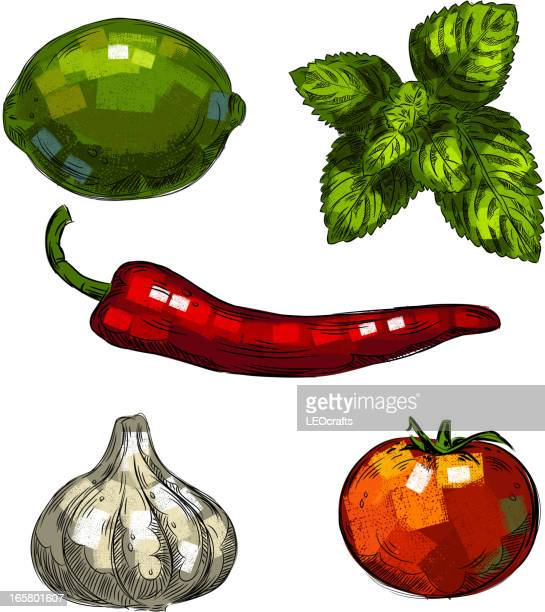fresh vegetables isolated on white - red chili pepper stock illustrations, clip art, cartoons, & icons
