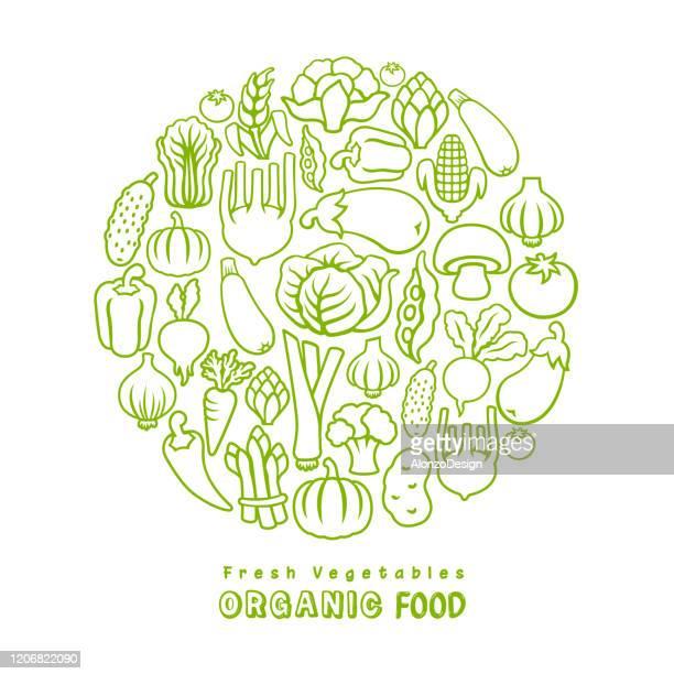 illustrazioni stock, clip art, cartoni animati e icone di tendenza di fresh vegetables. organic food. - cibi e bevande
