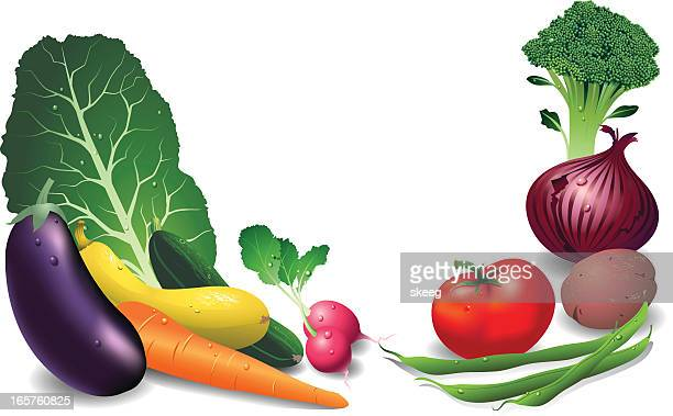 fresh vegetables - chard stock illustrations, clip art, cartoons, & icons