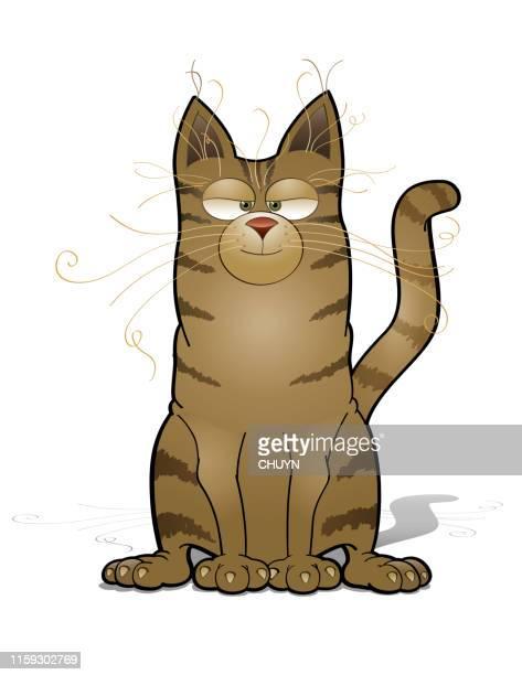 illustrations, cliparts, dessins animés et icônes de chat amical - chat humour