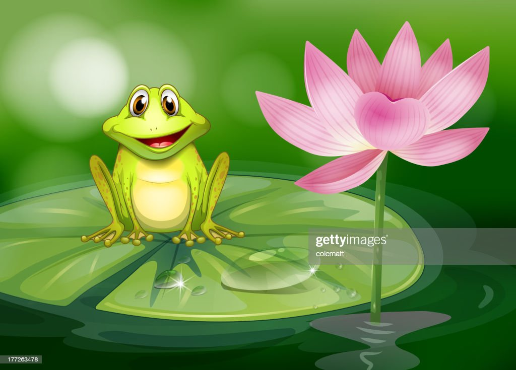 Frog beside the pink flower at pond