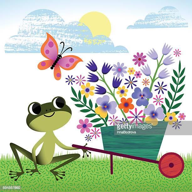 frog in spring, summer garden. - wheelbarrow stock illustrations, clip art, cartoons, & icons