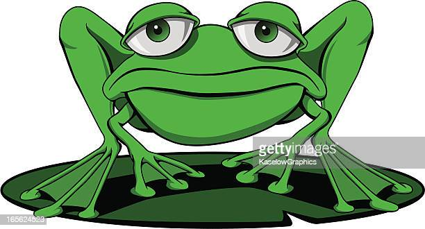 frog on a lily pad - webbed foot stock illustrations, clip art, cartoons, & icons