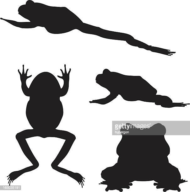 Frog Silhouette Collection (vector+jpg)