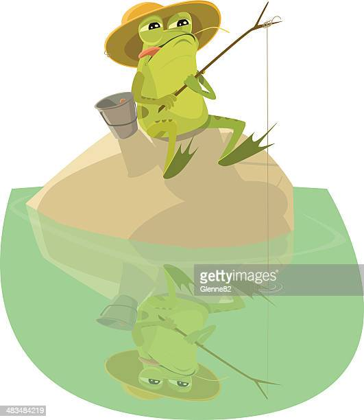 frog sitting on a rock fishing - webbed foot stock illustrations, clip art, cartoons, & icons
