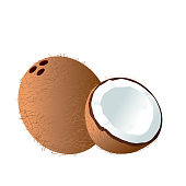 Fruit Icon Coconut White Background Vector Image