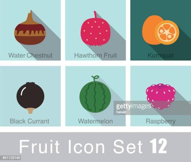 fruit icon set, vector - fournier gangrene stock illustrations