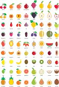 Fruit icons – big set of seventy-two vector icons