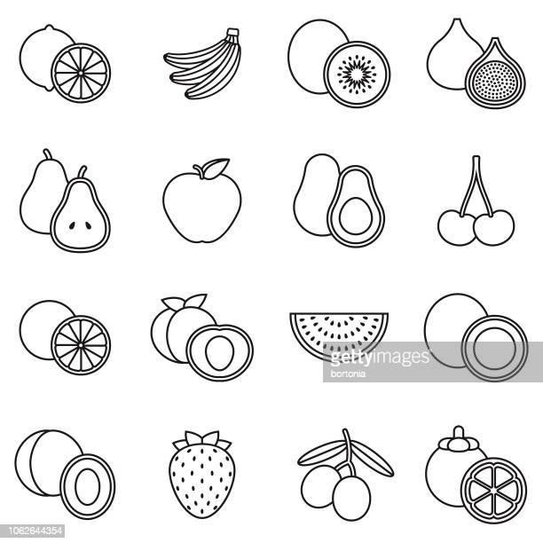 ilustrações, clipart, desenhos animados e ícones de conjunto de ícones de contorno fruta fina linha - clip art