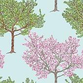 fruit tree in different seasons