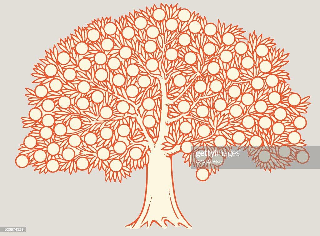 Fruit Tree : stock illustration