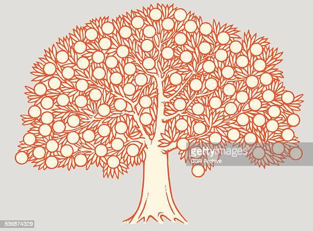 fruit tree - family tree stock illustrations, clip art, cartoons, & icons