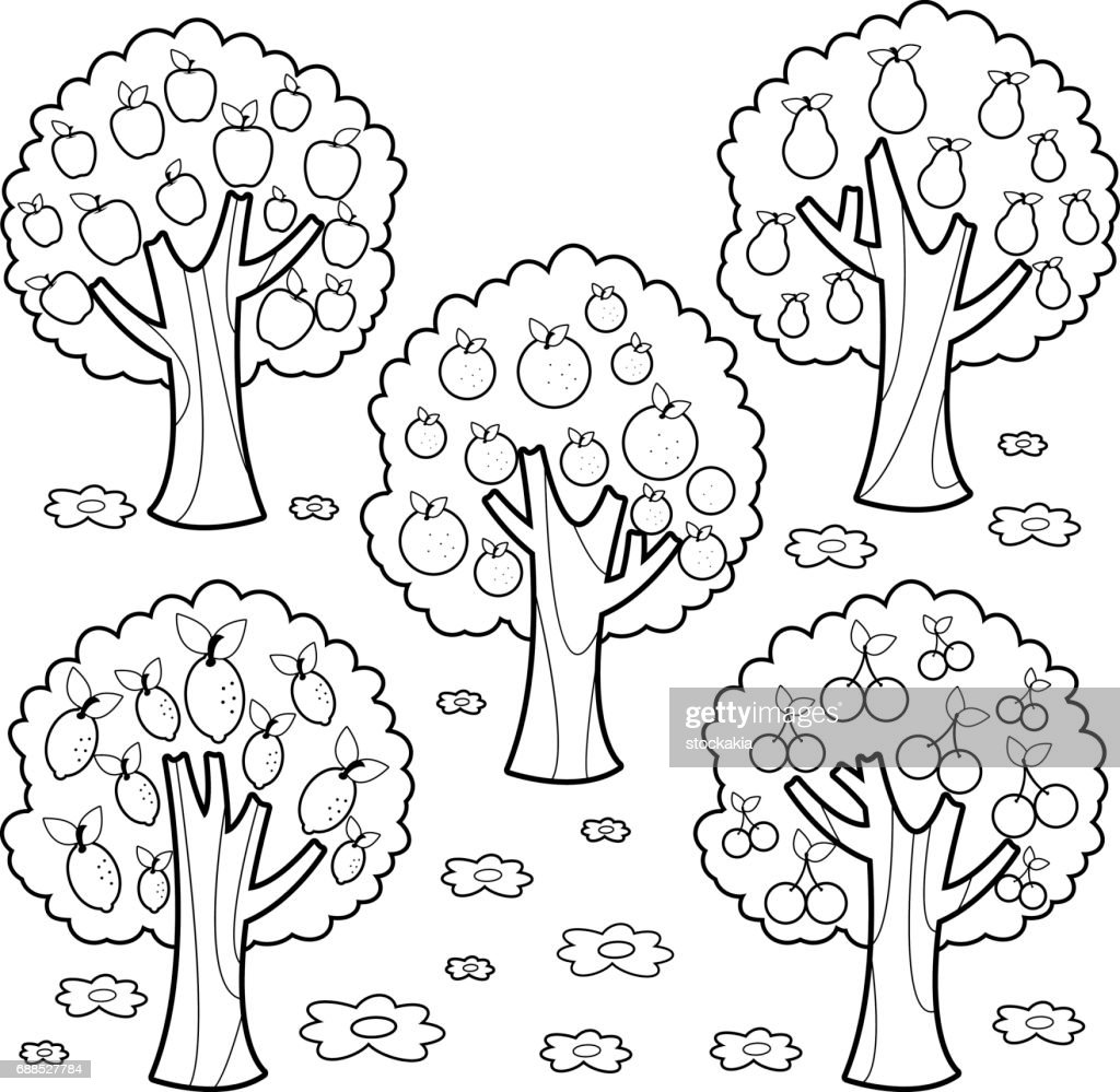 Fruit trees. Black and white coloring book page