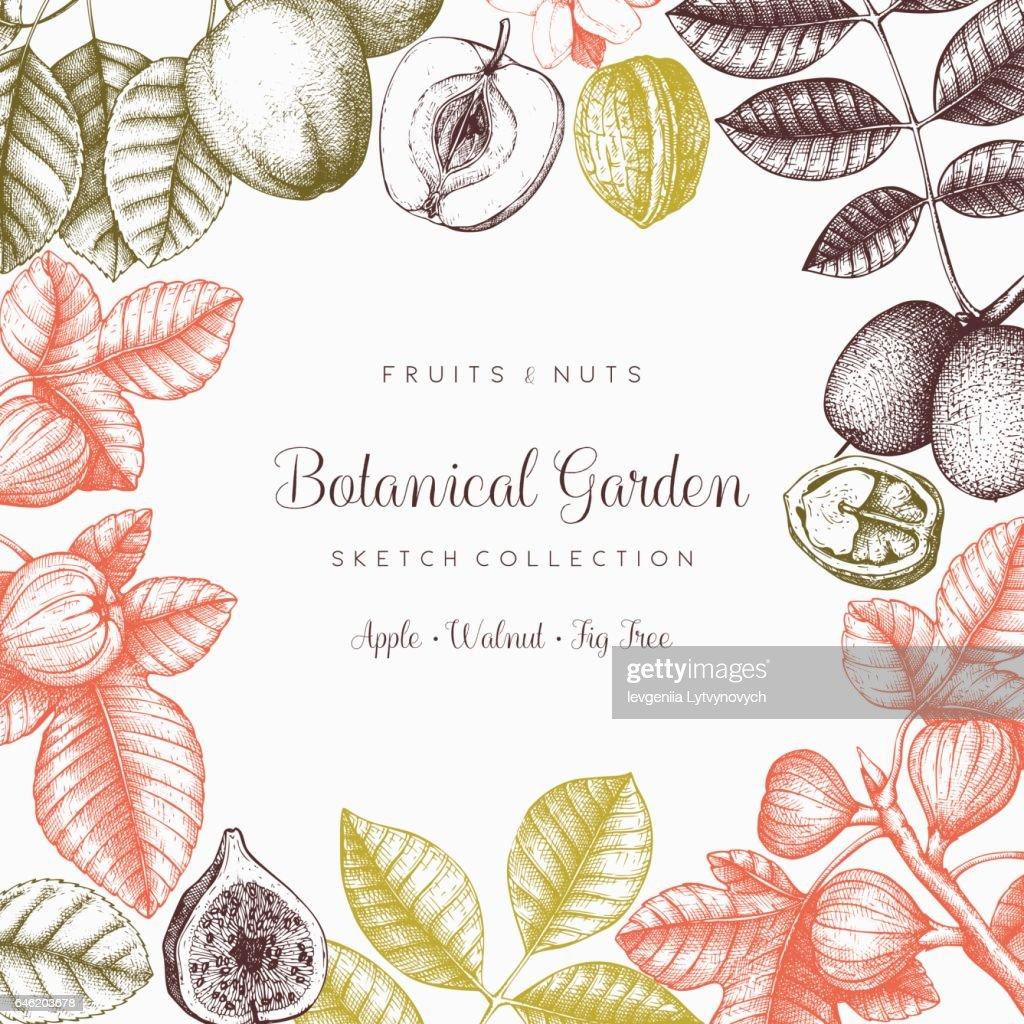 Fruit trees card design