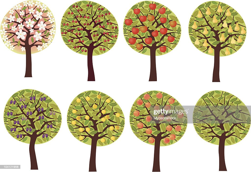 Fruit trees set