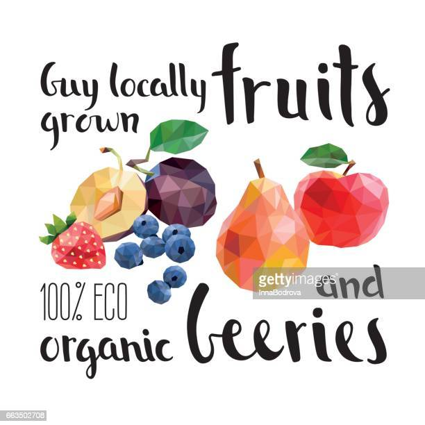 fruits and beers. fresh organic food. - apple fruit stock illustrations, clip art, cartoons, & icons