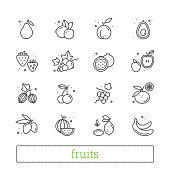 Fruits and berries thin line vector icons.