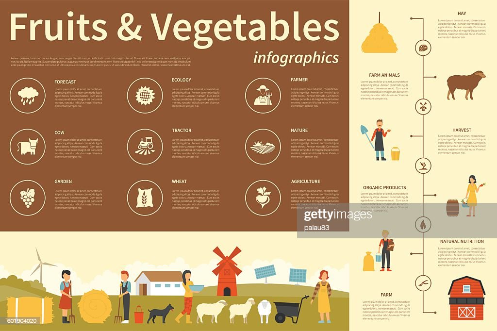 Fruits and Vegetables infographic flat vector illustration. Presentation Concept
