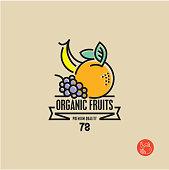 fruits, line fruits label, exotic fruits