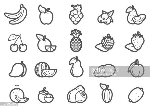 fruits line icons set - ranunculus stock illustrations, clip art, cartoons, & icons
