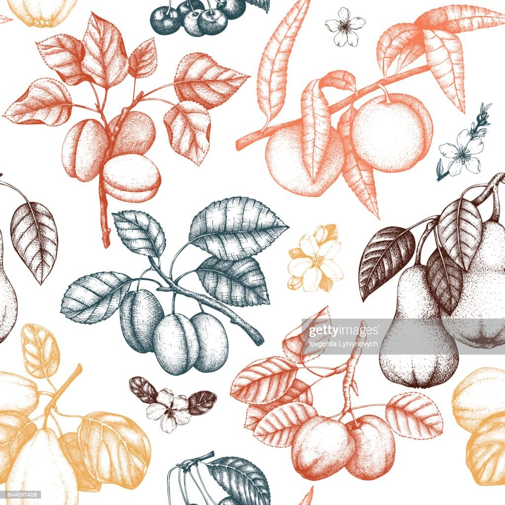 fruits_trees_pattern_1