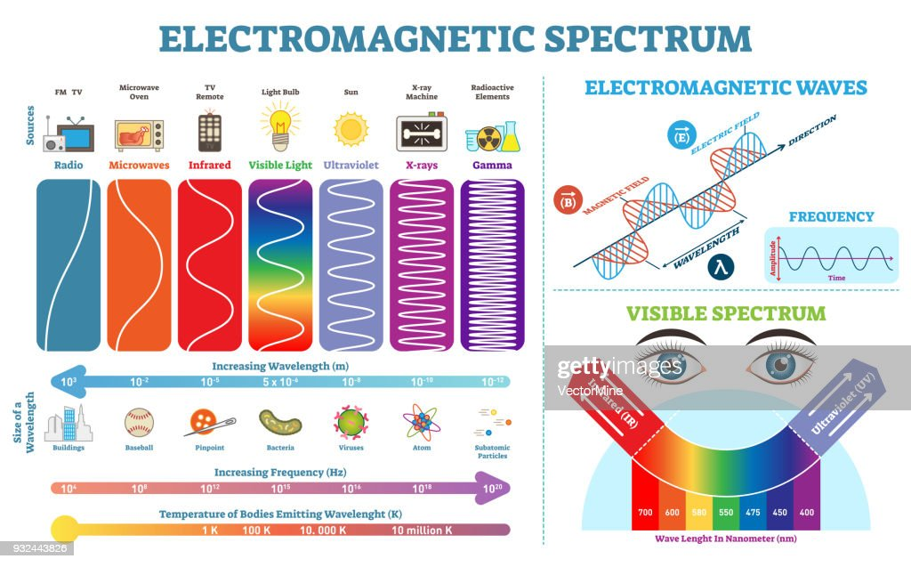 Full Electromagnetic Spectrum Information collection, vector illustration diagram with wave lengths, frequency and temperature. Electromagnetic wave structure scheme. Physics infographic elements.