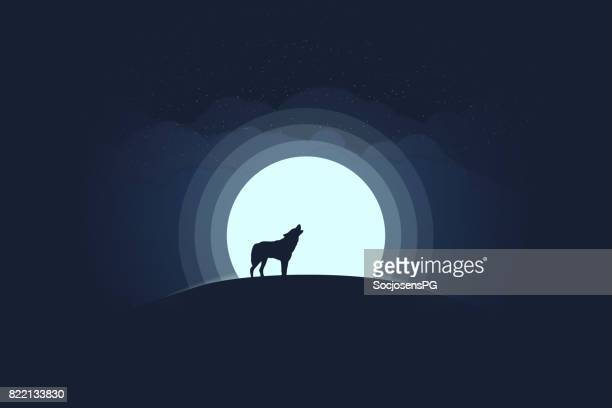 ilustrações de stock, clip art, desenhos animados e ícones de full moon and lonely wolf - lobo