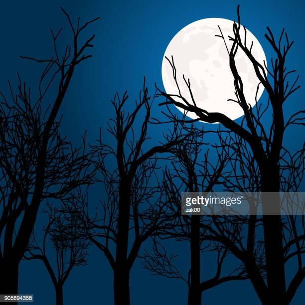 ilustraciones, imágenes clip art, dibujos animados e iconos de stock de luna llena en el cielo azul - luna llena