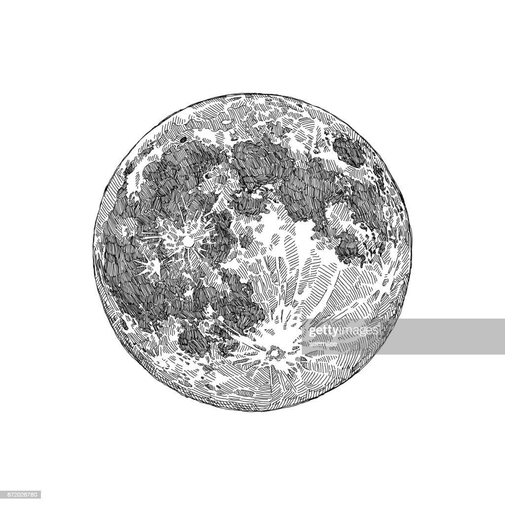 Full Moon Sketch : stock illustration
