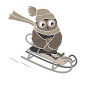 Funny and cute sledging owl. New Year and Christmas card. Vector illustration