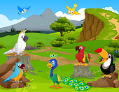 funny birds cartoon with mountain cliff landscape background
