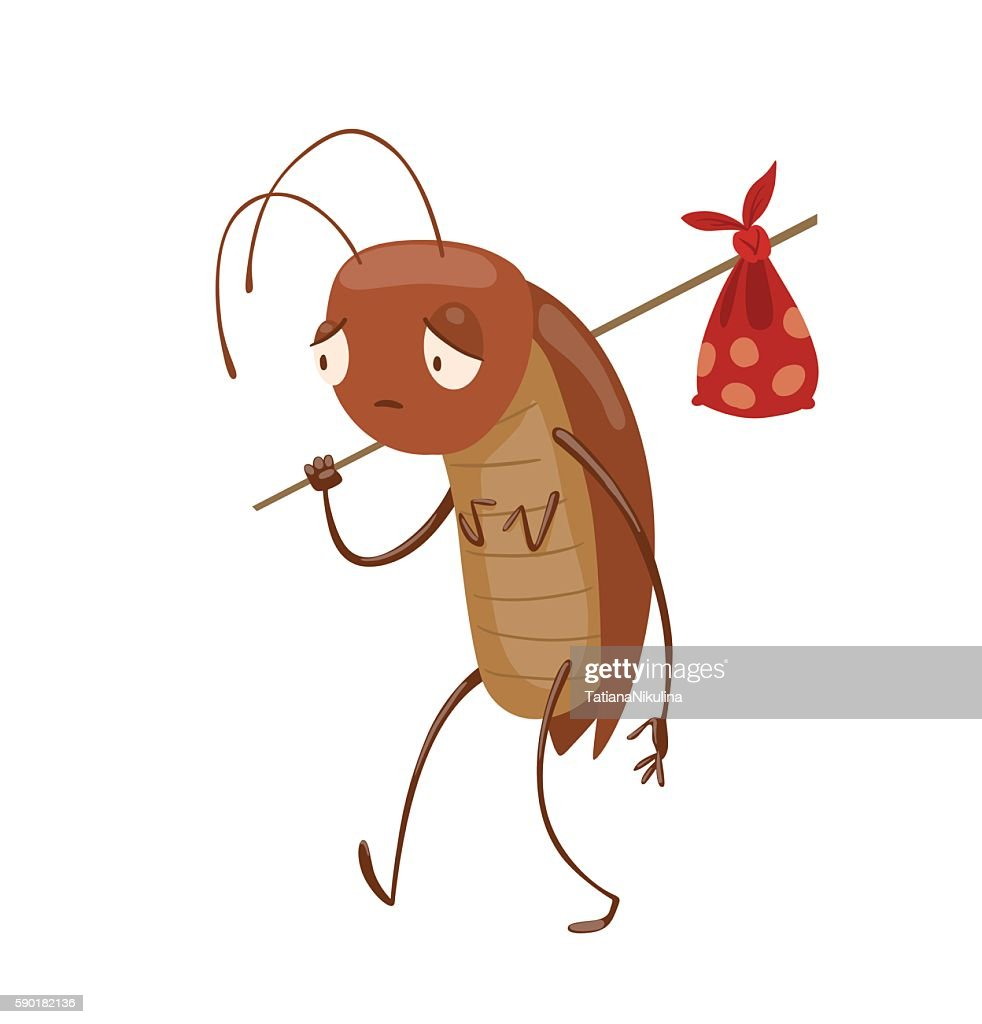 Funny brown cockroach with a knapsack
