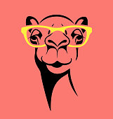 funny camel wearing glasses. vector illustration for T shirt, poster, print design.