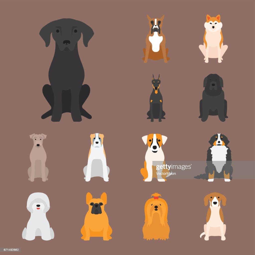 Funny cartoon dog character bread cartoon puppy friendly adorable canine vector illustration