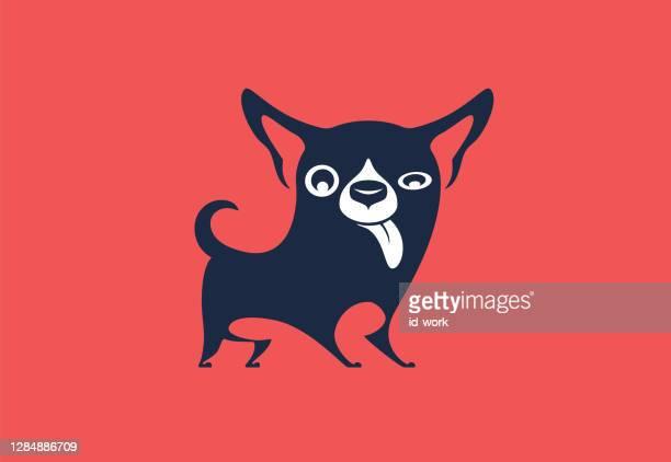 funny chihuahua dog symbol - chihuahua dog stock illustrations