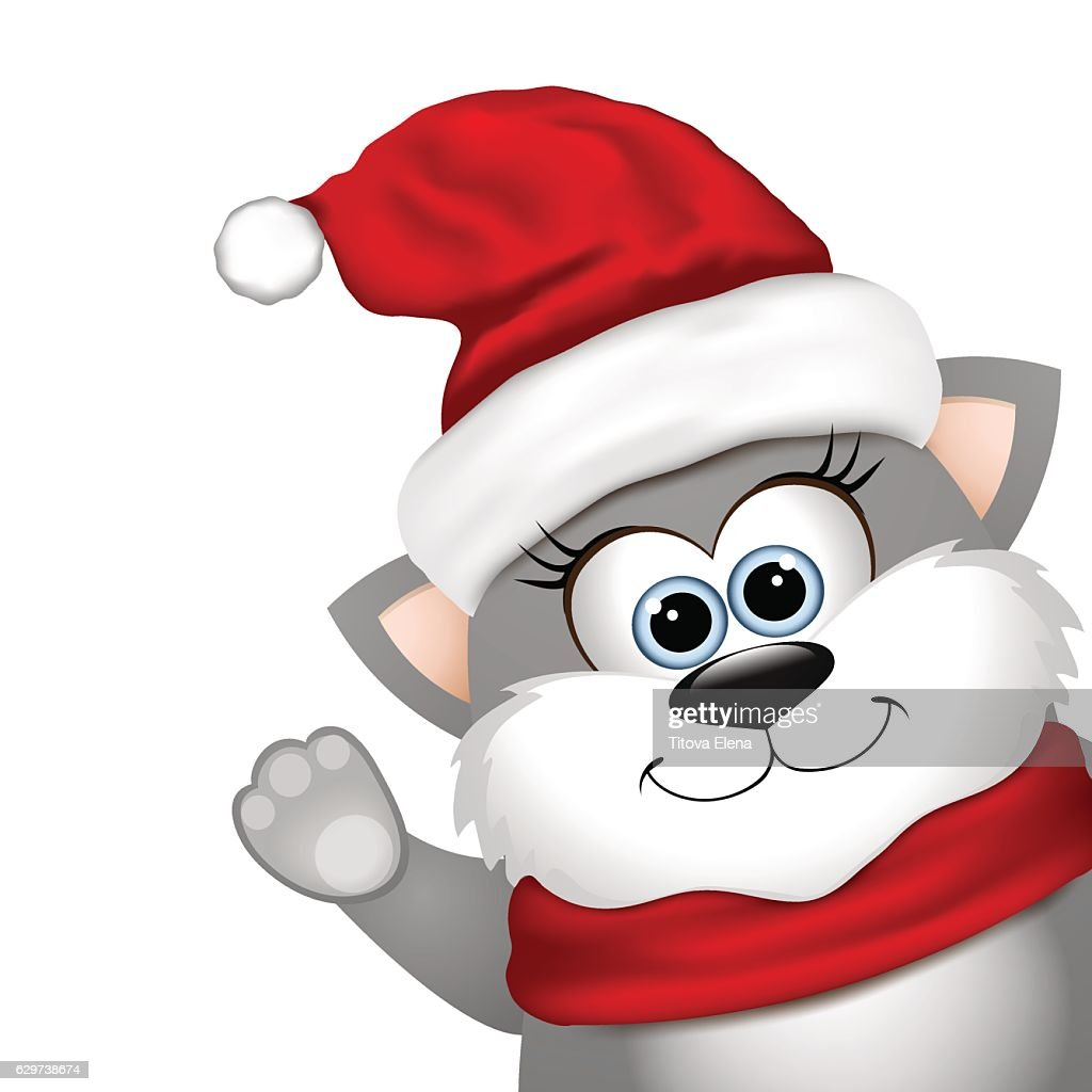 Funny Christmas cat on a white background
