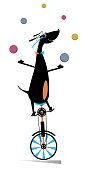 Funny dog rides on unicycle and juggles the balls illustration